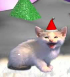 Cat from Djingle cats video